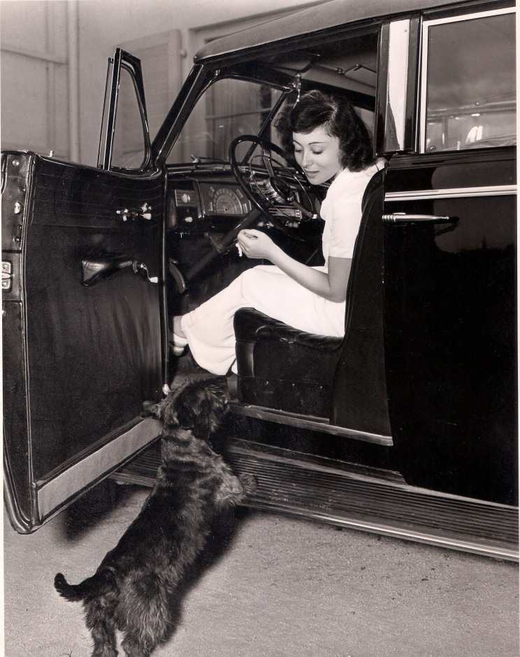 HOW WOULD YOU LIKE TO SPEND A DAY WITH LUISE RAINER?... Well, here we go, following her footsteps from early morning until she finishes her day's work after dark. Miss Rainer climbs into her car at 7:30a.m. and tells her pet Scottie, Johnny, goodbye. [MGM publicity photo by Eric Carpenter. Part of a series depicting a 'day in the life' of Luise. October 1938.]